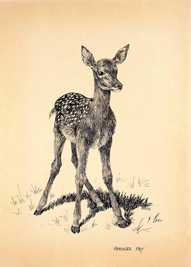 Bambi Painting - Pen and Ink on card of a young fallow deer  by MotionAge Designs