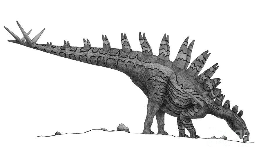 Pencil Drawing Of Tuojiangosaurus Digital Art