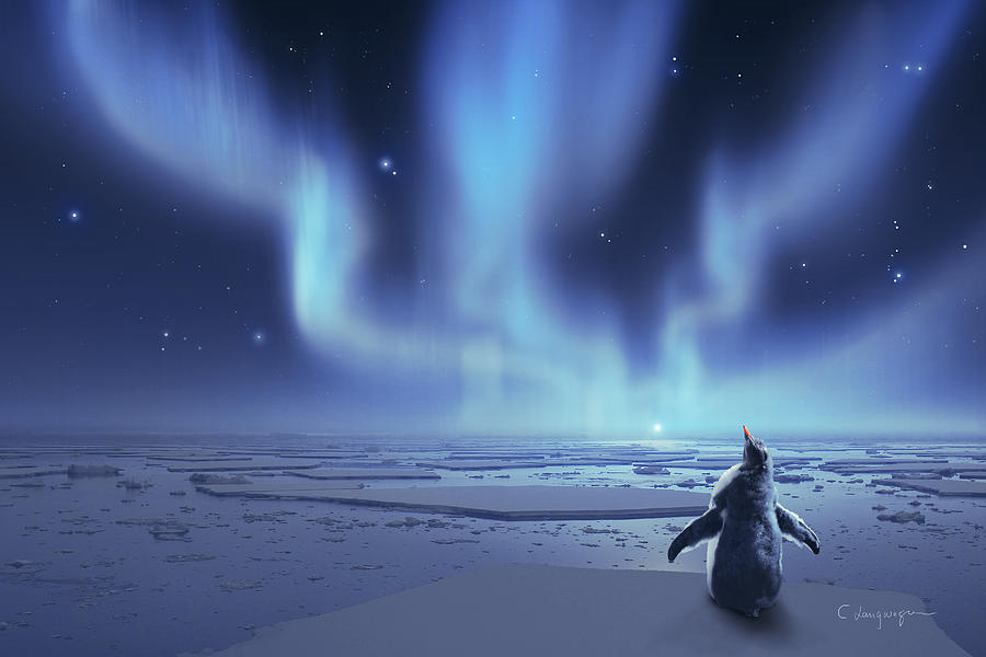 Penguin Dreams by Cassiopeia Art
