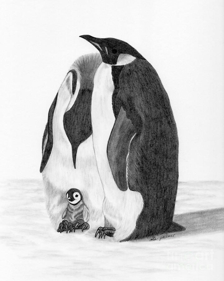 Penguin Family Drawing By Rita Palmer