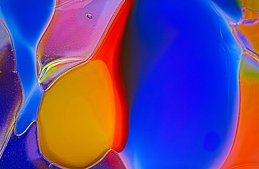 Abstract Photograph - Penguins by Omaste Witkowski