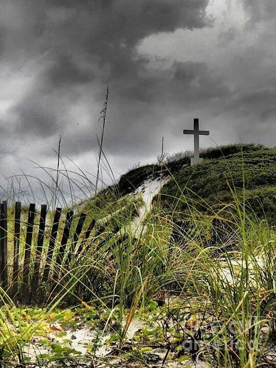 Wildlife Photograph - Pensacola Beach Cross by Michelle Powell