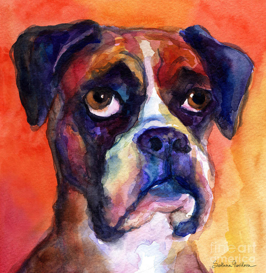 pensive Boxer Dog pop art painting by Svetlana Novikova