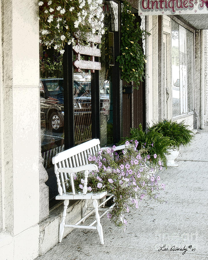 Paris Photograph - Pentunia Bench by Lee Owenby