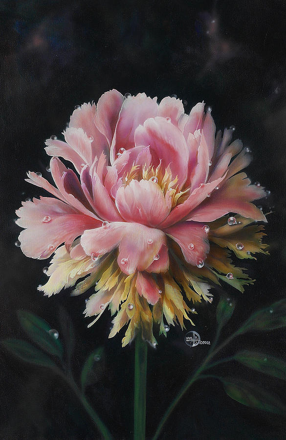 Flower Painting - Peony by Lynette Yencho