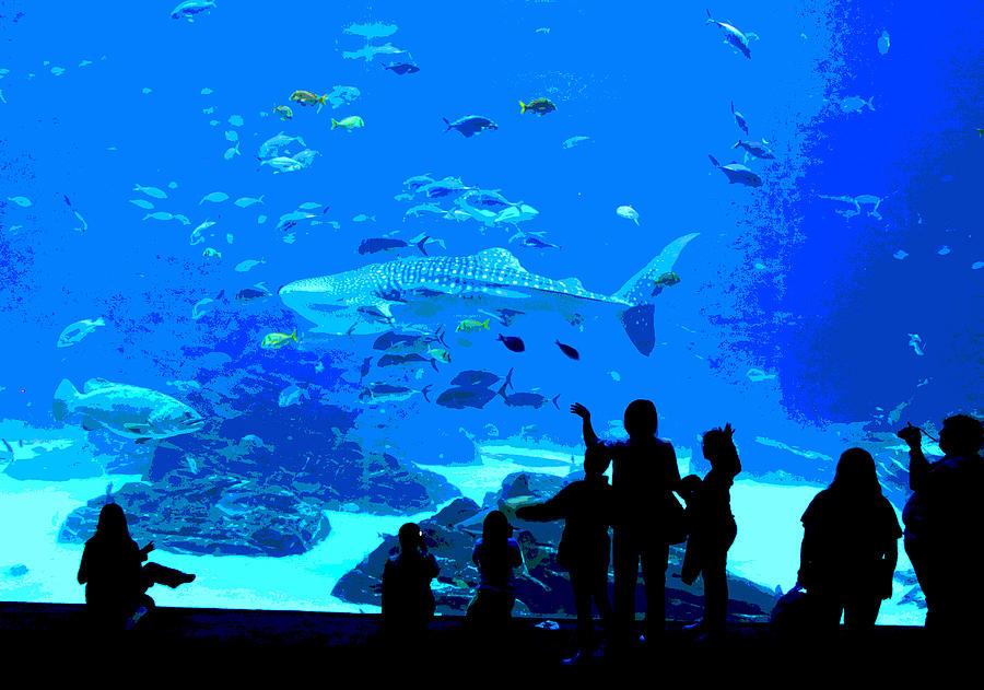 Decor Aquarium Iphone