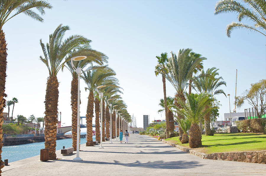 People In Between Palms On Eilat Walkway Photograph by Barry Winiker