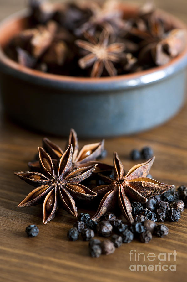 Anise Photograph - Pepper And Spice by Anne Gilbert