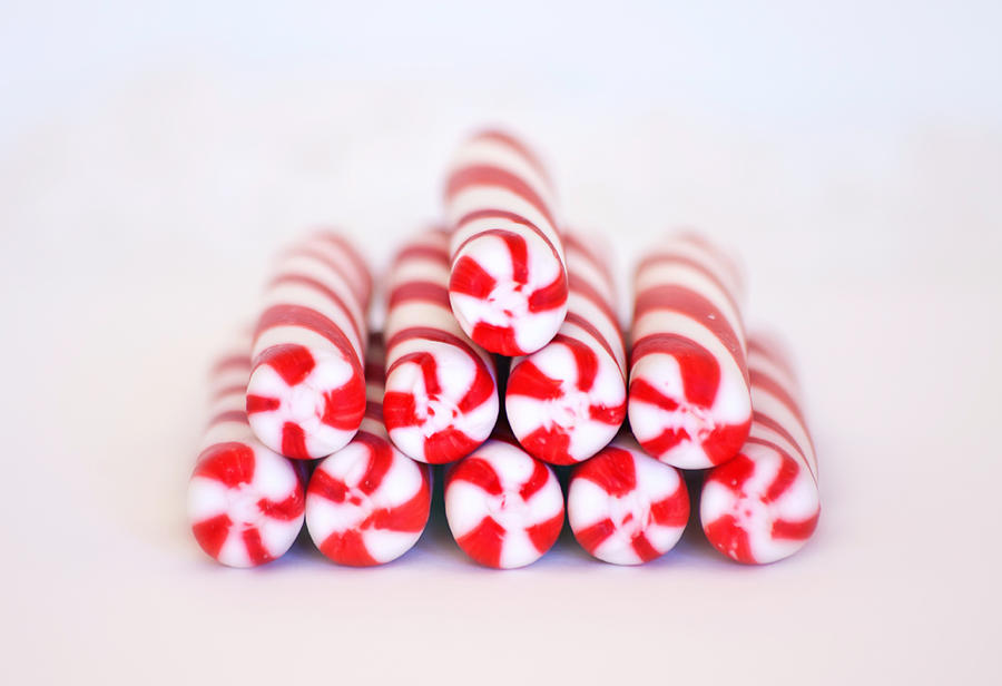 Bright Photograph - Peppermint Twist - Candy Canes by Kim Hojnacki