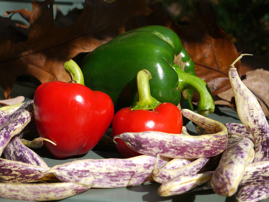 Richard Reeve Photograph - Peppers And Beans by Richard Reeve