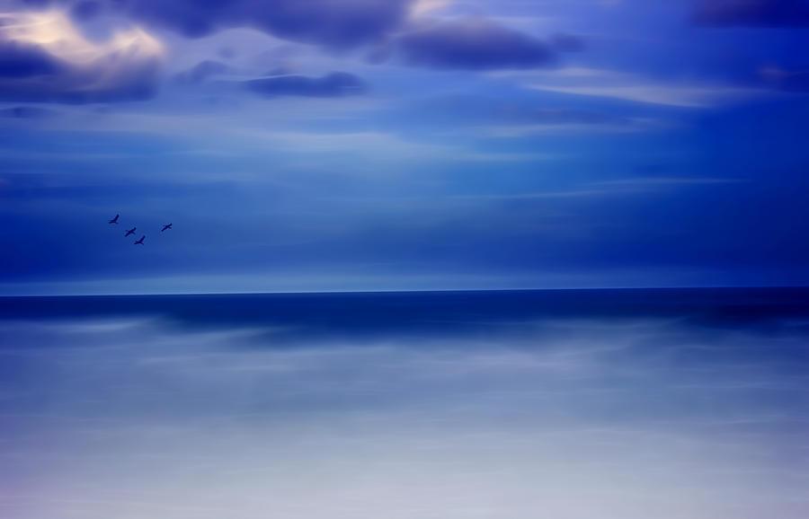 Harmony Photograph - Perfect Harmony by Ellen Heaverlo