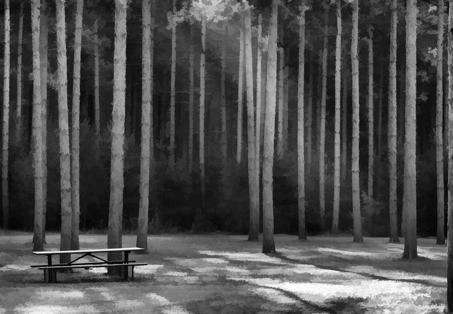 Picnic Area Photograph - Perfect Picnic Place by Thomas Young