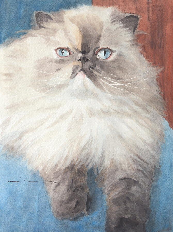 Persian Cat Watercolor Drawing by Mike Theuer