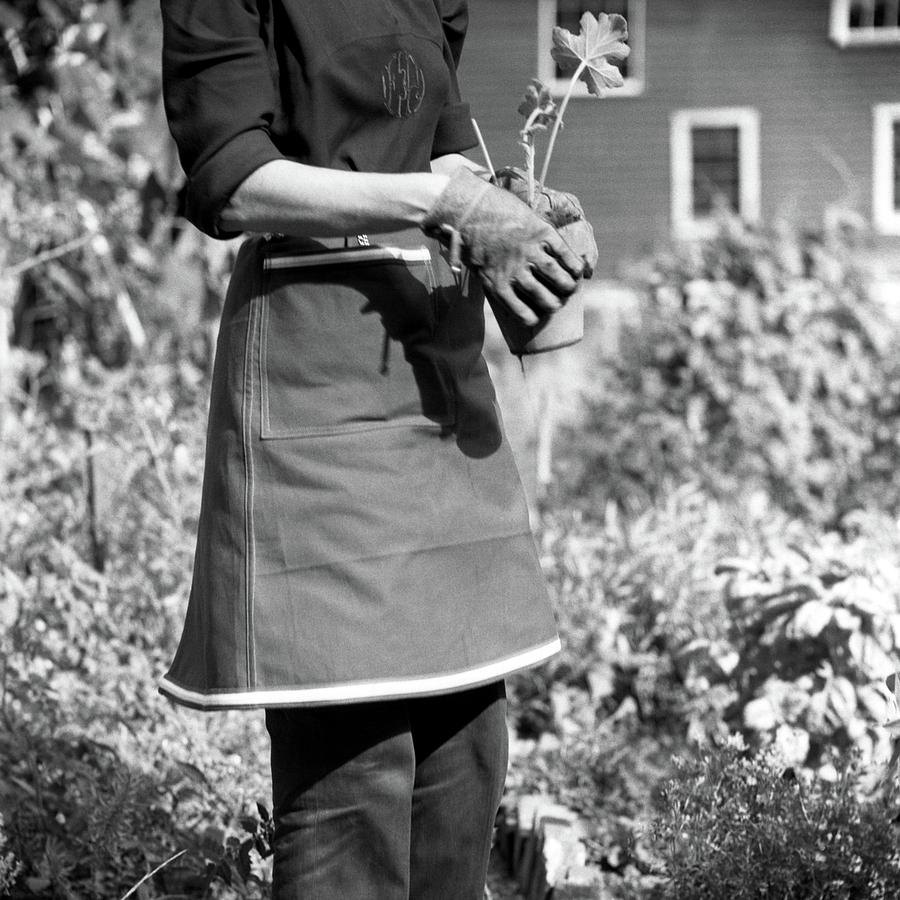 Person Wearing A Gardening Apron Photograph by Frances McLaughlin-Gill