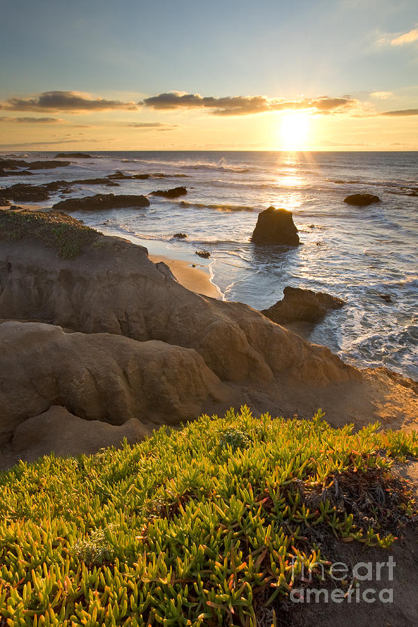 Pescadero Photograph - Pescadero State Beach at Sunset by Matt Tilghman
