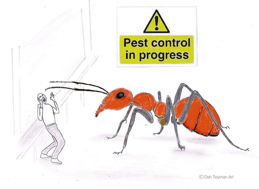 Pest Control Drawing - Pest Control by Dan Twyman