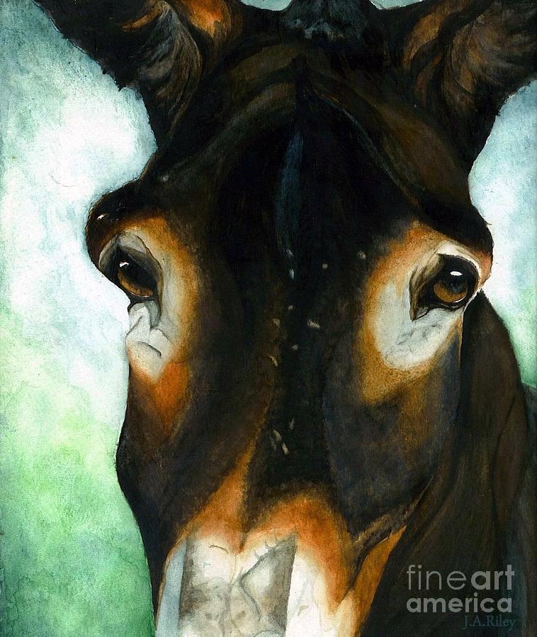 Mule Painting - Pete The Mule by Janine Riley