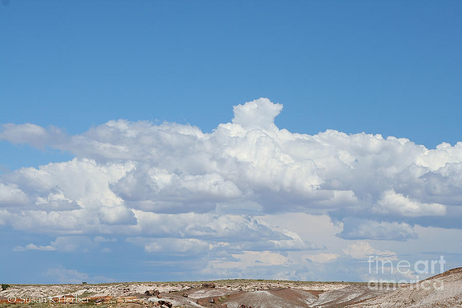 Outdoors Photograph - Petrified Forest Horizon by Susan Herber