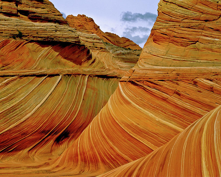 Sandstone Photograph - Petrified Sand Dunes The Wave by Ed  Riche