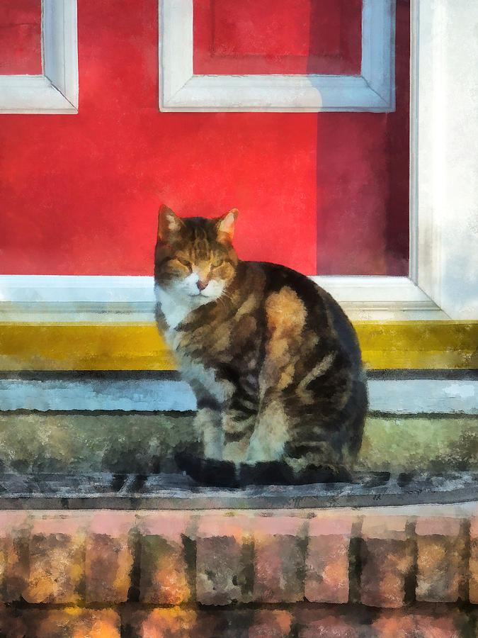 Cat Photograph - Pets - Tabby Cat By Red Door by Susan Savad
