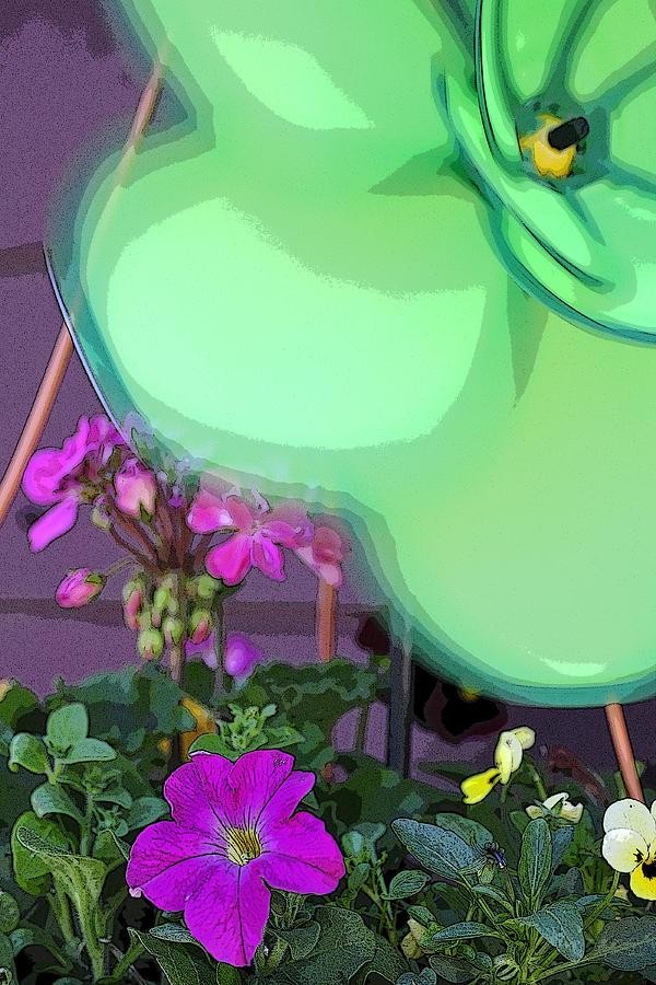 Petunia 5923 Photograph