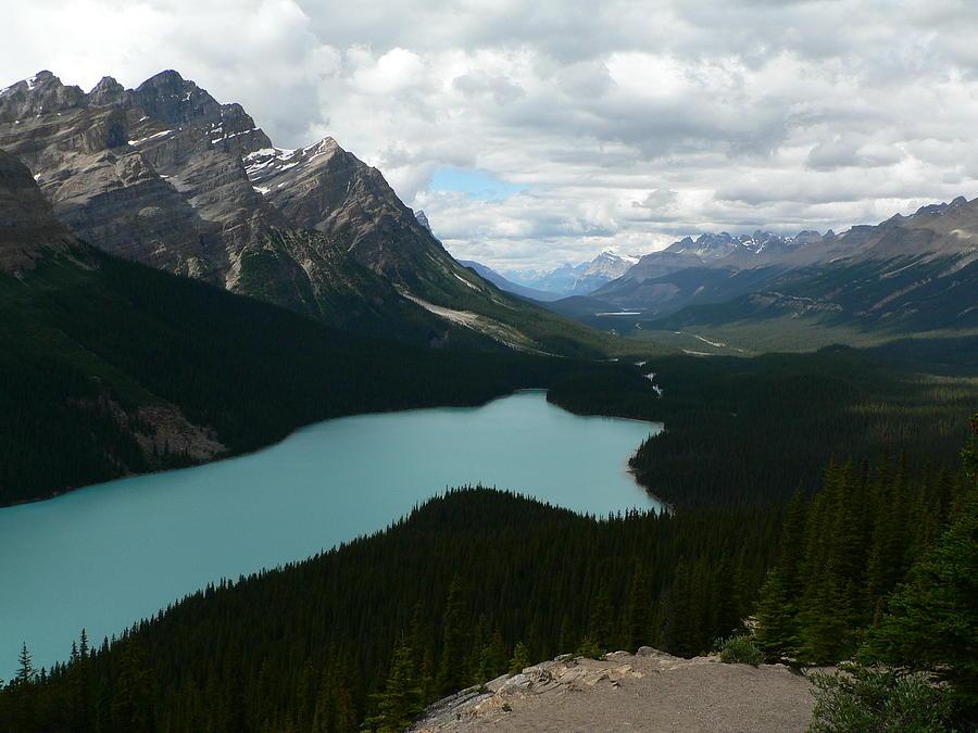 Peyote Photograph - Peyote Lake in Banff Alberta by Laurel Best