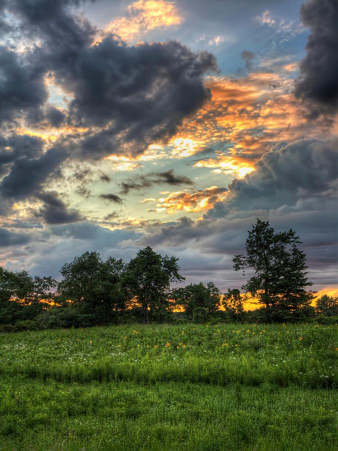 South Lyon Photograph - Phantom Sunset Over Sunflower Fields  by Jenny Ellen Photography