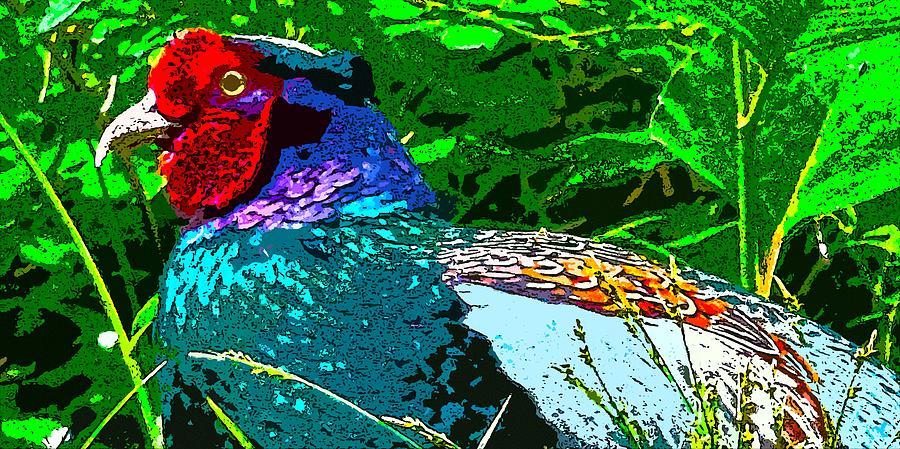 Pheasant DigiArtwork by Tim Ernst