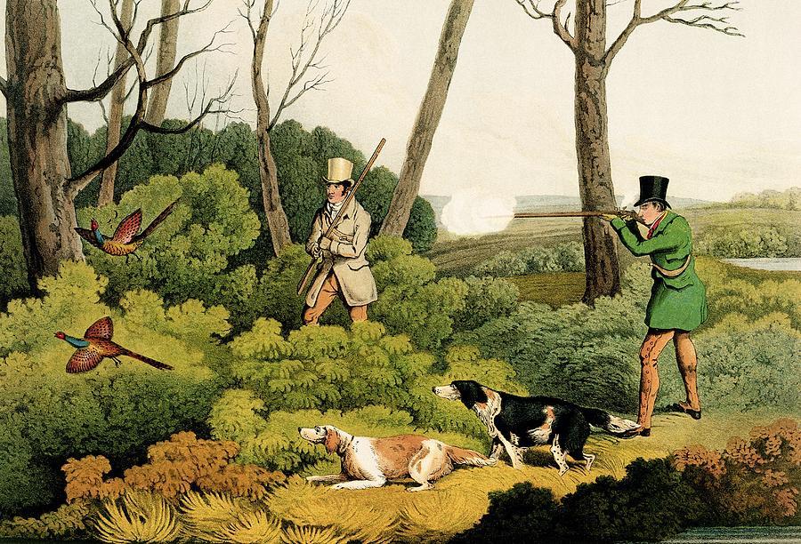Pheasant Shootin Painting by Henry Thomas Alken