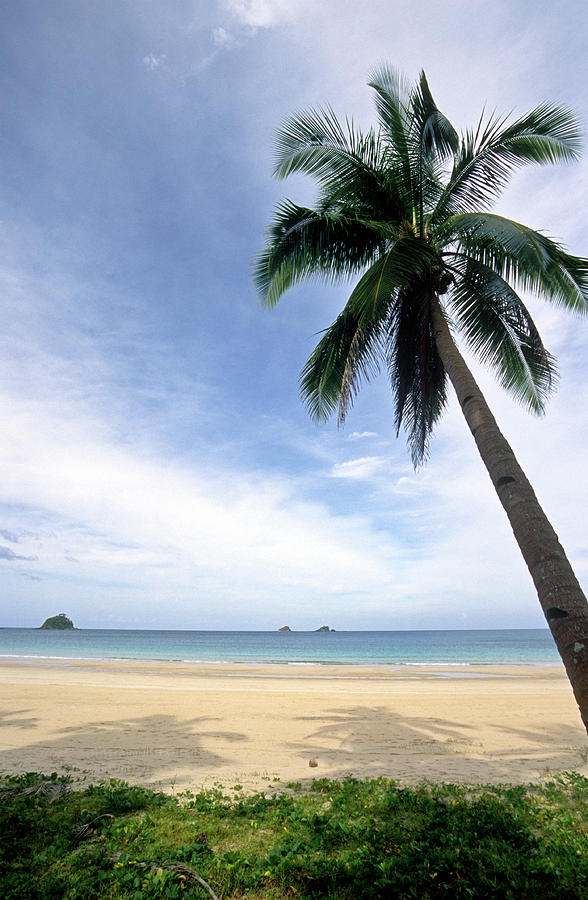 Philippines, Palawan Province, Beach Photograph by Tropicalpixsingapore