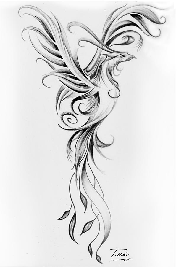 phoenix black and white drawing by terri meredith. Black Bedroom Furniture Sets. Home Design Ideas