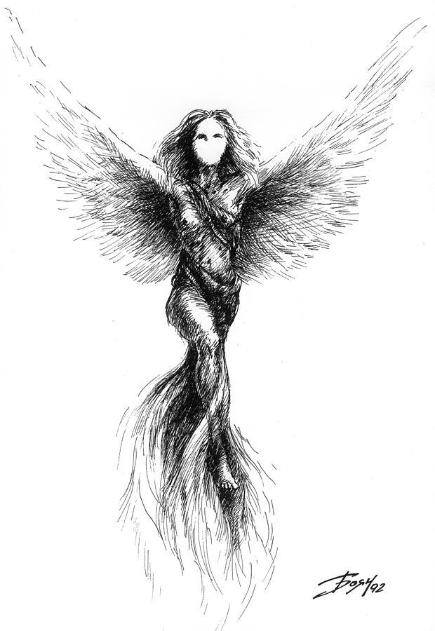 Phoenix Drawing - Phoenix by Boyan Donev