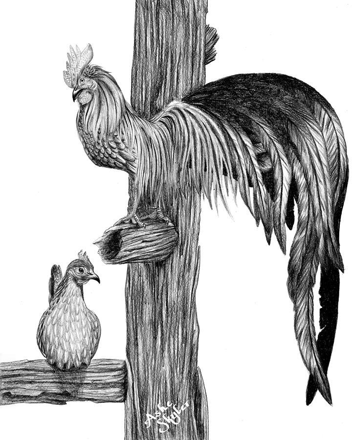 Phoenix Chicken Drawing by Ashe Skyler