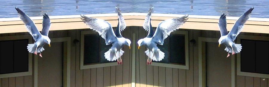 Amalgamation Digital Art - Photo Synthesis 3 by Will Borden