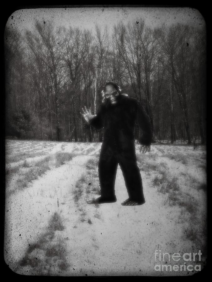 Yeti Photograph - Photographic Evidence Of Big Foot by Edward Fielding