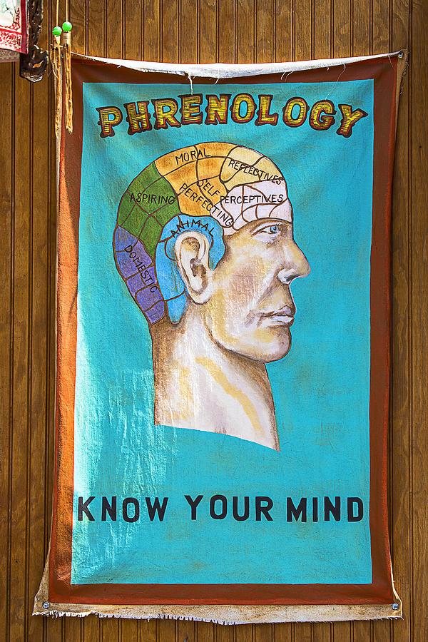 Phrenology Photograph - Phrenology by Garry Gay