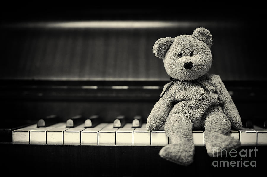 Teddy Bear Photograph - Piano Bear by Tim Gainey