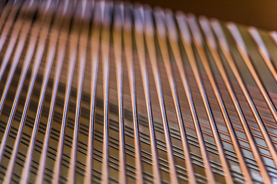 Piano Photograph - Piano Strings by Chris McCown
