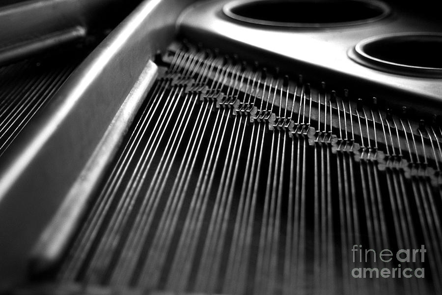 Piano Photograph - Piano Strings by Tim Hester
