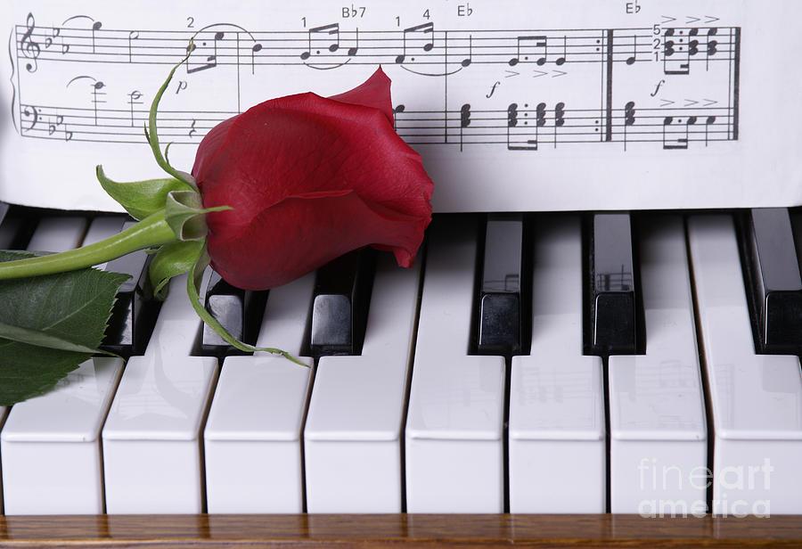 лили многогранно открытка с клавиатурой фортепиано красных крыш
