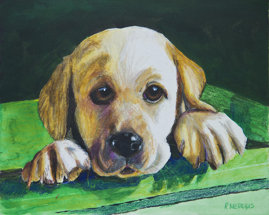 Yellow Lab Painting - Pick Me by Roger Wedegis