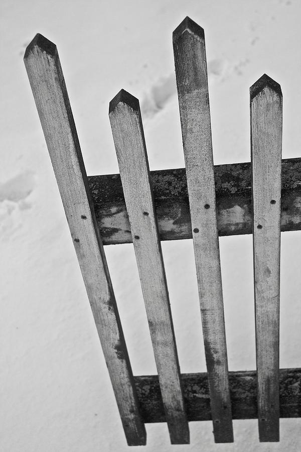 Pickets Photograph - Pickets by Odd Jeppesen