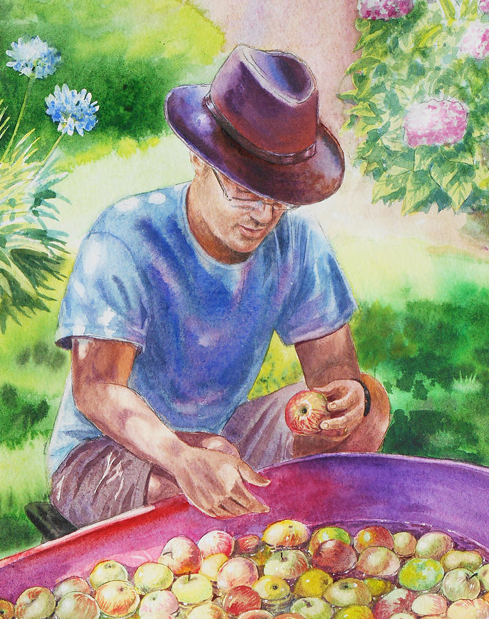 Apples Painting - Picking Apples by Irina Sztukowski