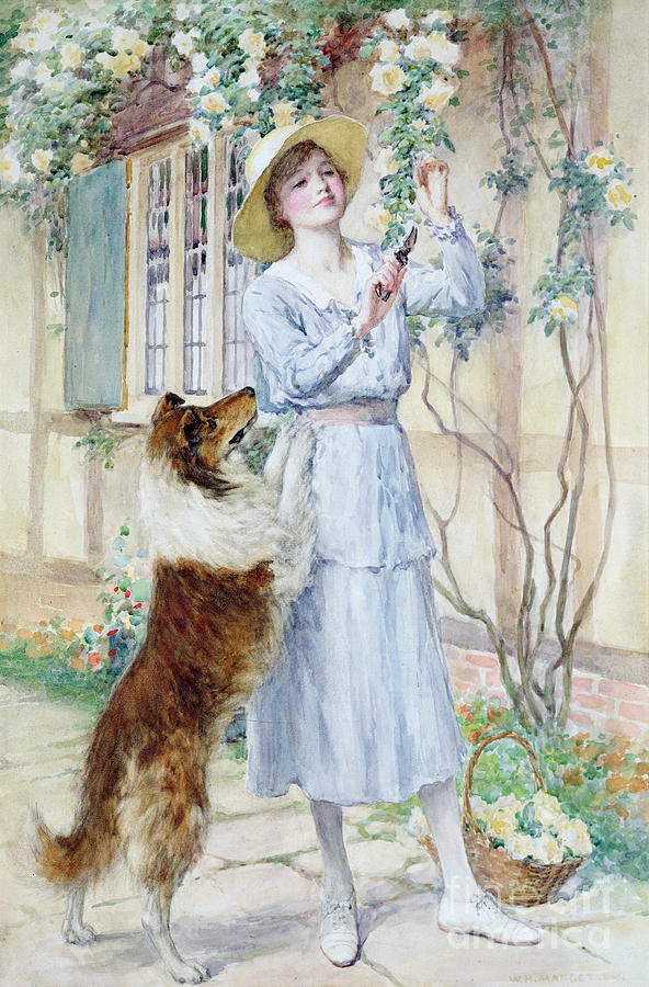 Rose Painting - Picking Roses by William Henry Margetson