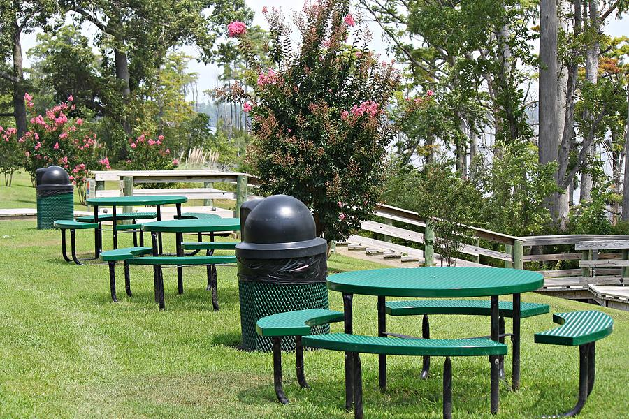 Table Photograph - Picnic Area by Carolyn Ricks