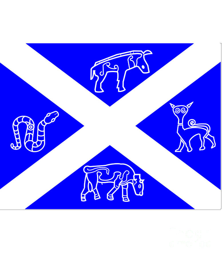 Pictish Digital Art - Pictish Scotland Flag 2 by Frederick Holiday