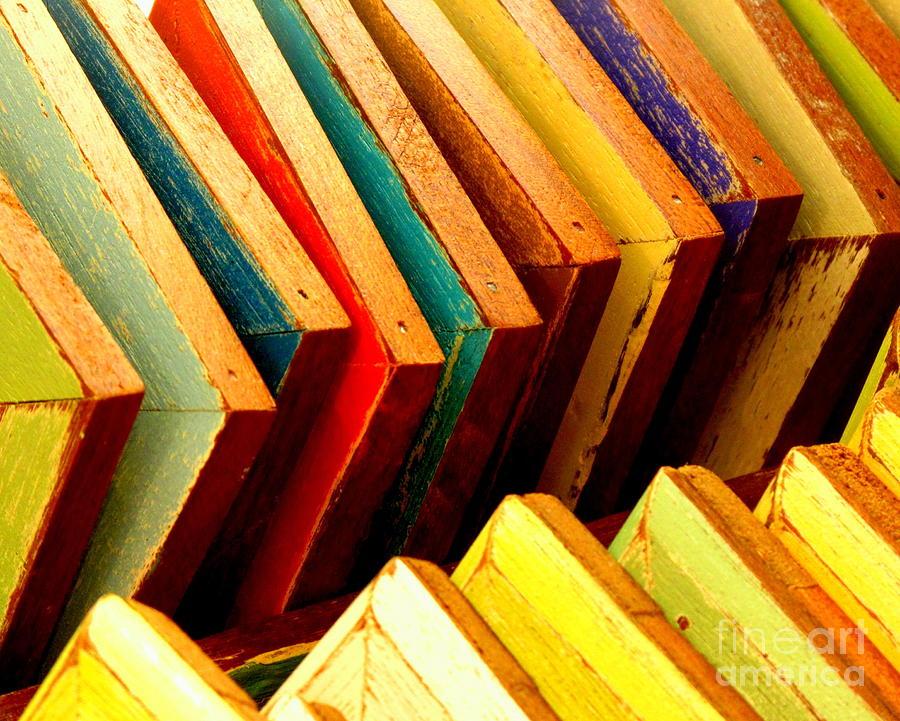 Ranjini Kandasamy Photograph - Picture Frames by Ranjini Kandasamy