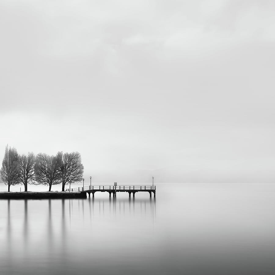 Landscape Photograph - Pier With Trees (2) by George Digalakis