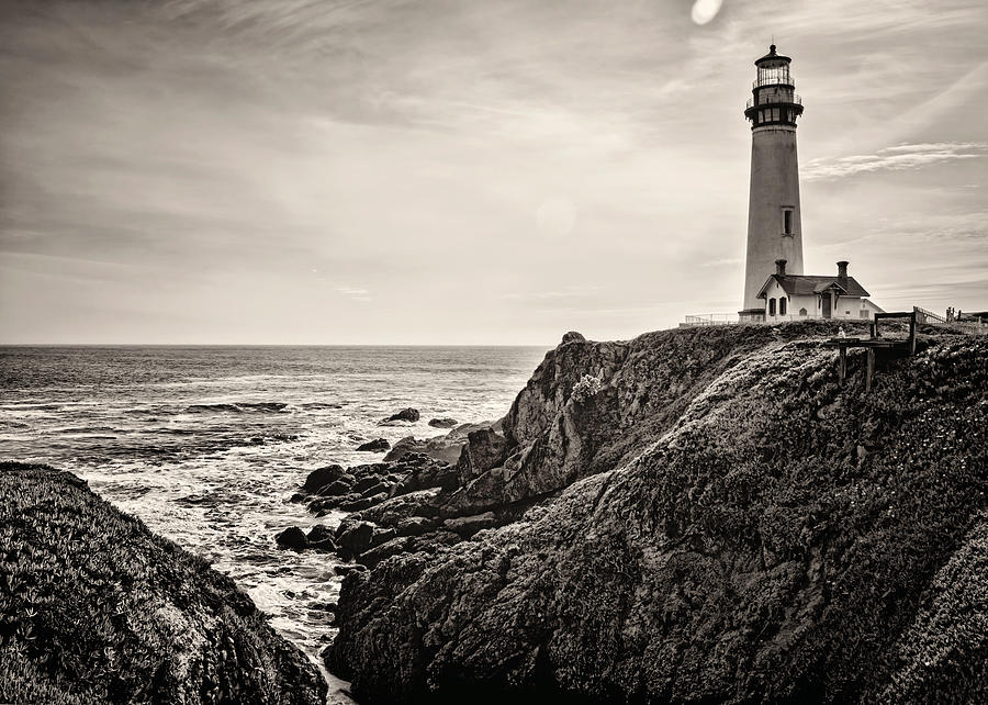 Lighthouse Photograph - Pigeon Point Light by Heather Applegate