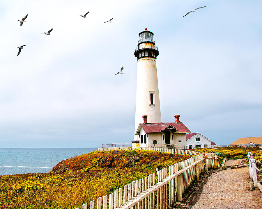 Pigeon Point Lighthouse Photograph - Pigeon Point Lighthouse by Artist and Photographer Laura Wrede